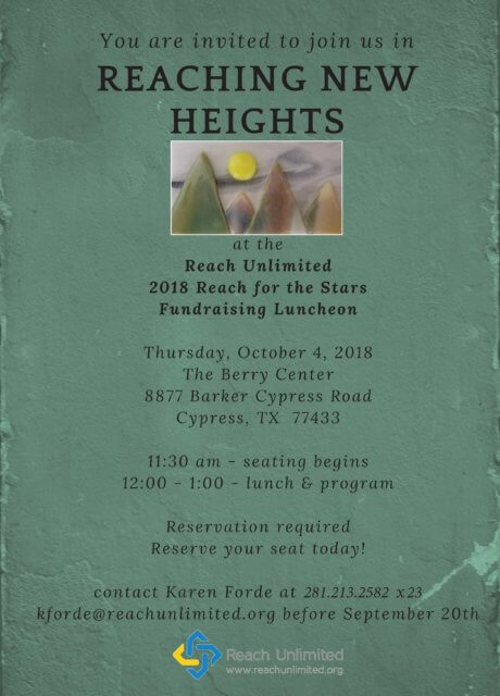 2018 Reach for the Stars - Reaching New Heights - Fundraising Luncheon